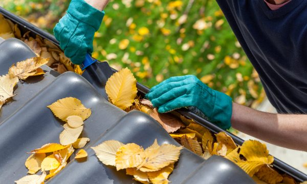 Winterizing Your Home in Ottawa